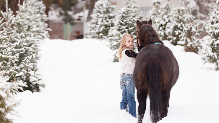 Ashlyn & Pippy | Equine