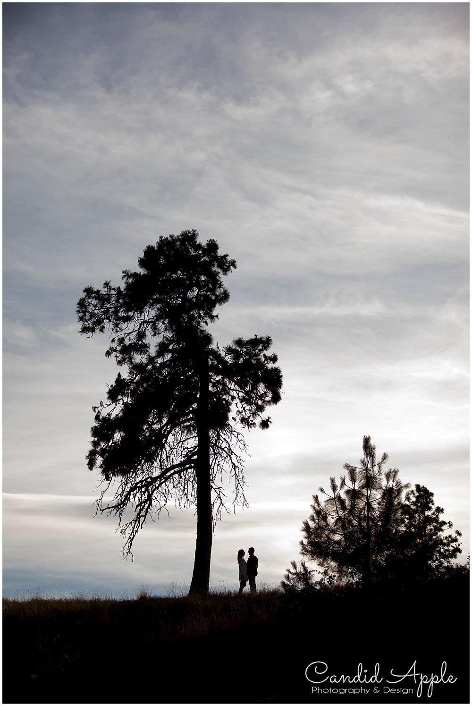 Kelowna_Bertram_Creek_Park_Engagement_Photographers__0023