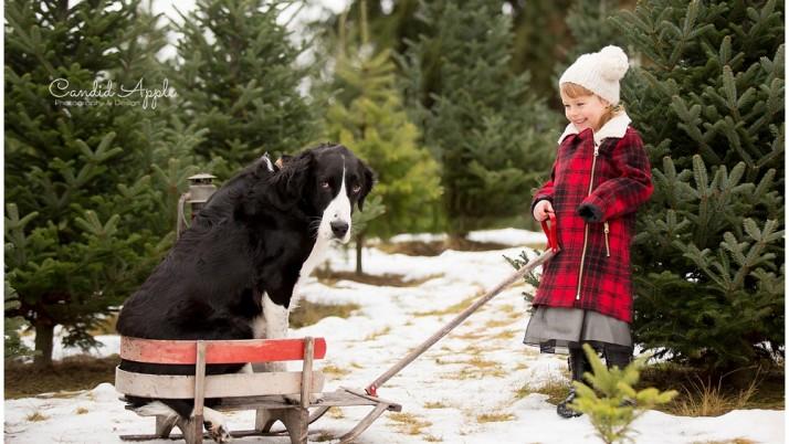The Russell Family | Tree Farm Mini