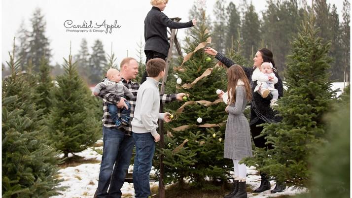The Wiersma Family | Tree Farm Mini
