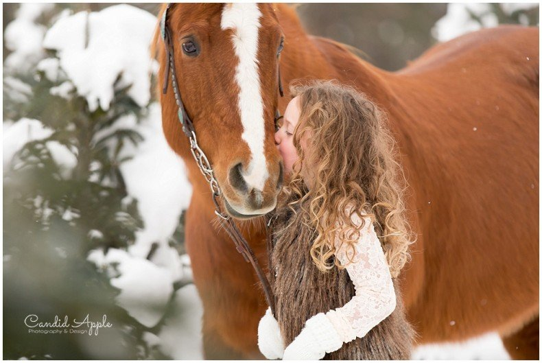 Kelowna_Winter_Equine_Photographers__0007