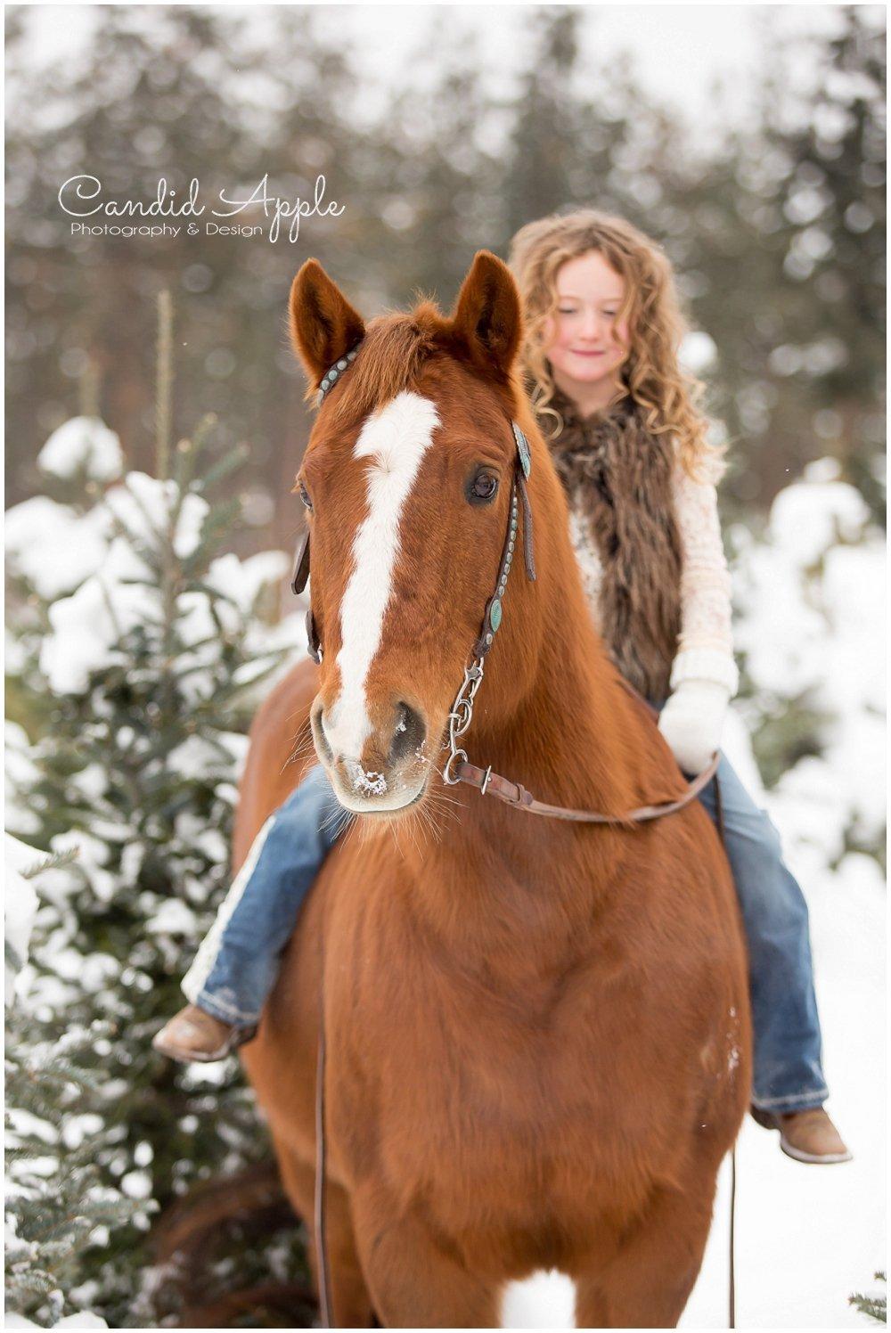 Kelowna_Winter_Equine_Photographers__0022