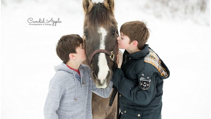Mr. Dunbar | Kelowna Senior Equine