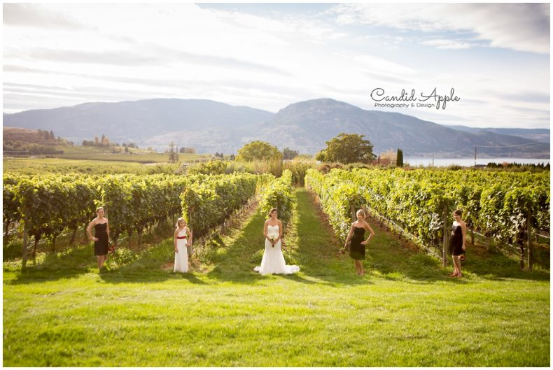 hillside-winery-naramata-wedding-photographers_0082