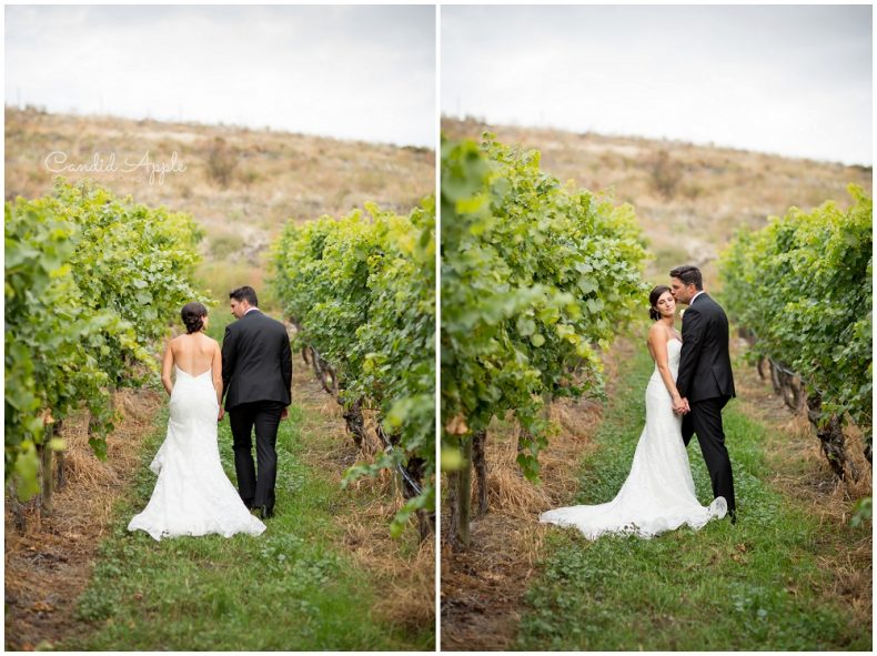 hillside-winery-naramata-wedding-photographers_0117