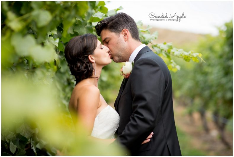 hillside-winery-naramata-wedding-photographers_0120