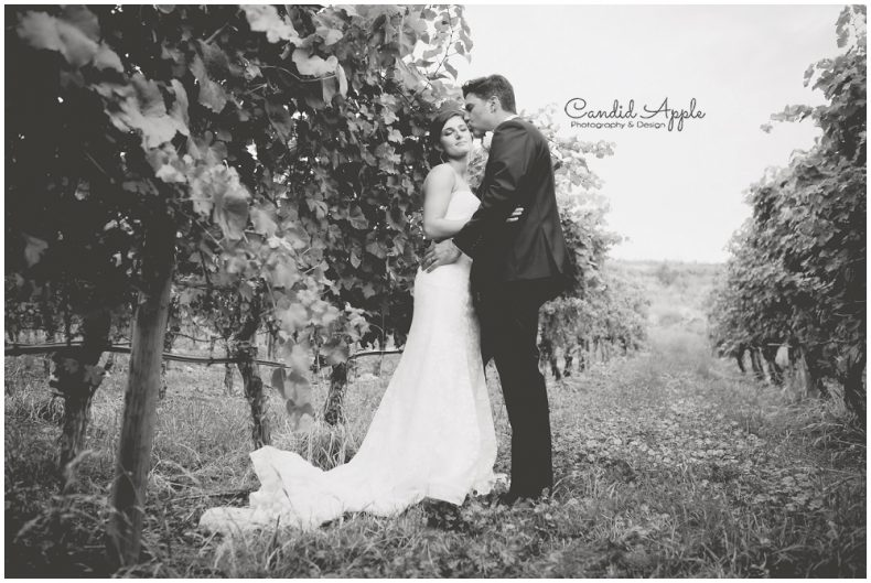 hillside-winery-naramata-wedding-photographers_0121