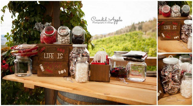 hillside-winery-naramata-wedding-photographers_0123