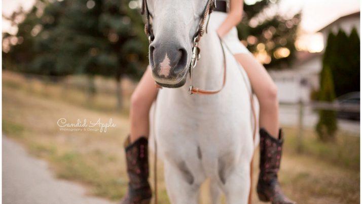 Nikki | Equine Love