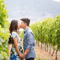 A couple kissing in a vineyard, holding hands