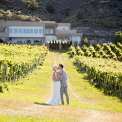 A couple kissing in a beautiful vineyard