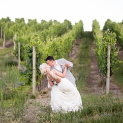 Bride and groom dipping in a vineyard