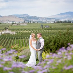 The Vibrant Vine Winery